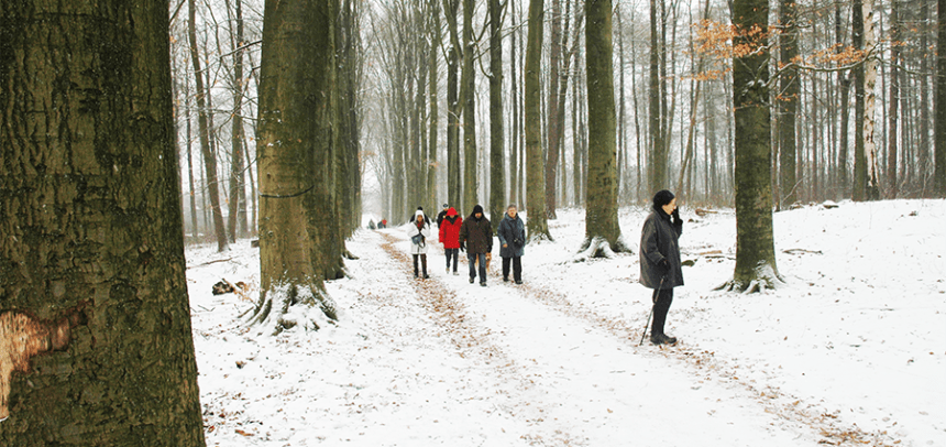 Wintertocht